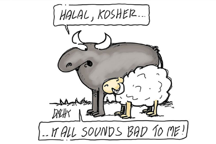 The differences between Halal & Kosher ?